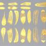 siirdepilt suled kuld väikesed