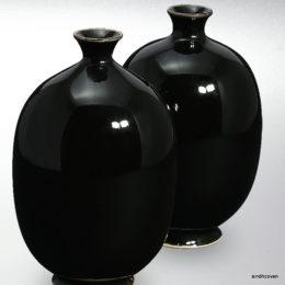 8254-Teracolor must läikiv