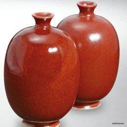 8255-Teracolor Flamenco